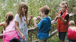 Third graders finding seeds at Ada Christian School